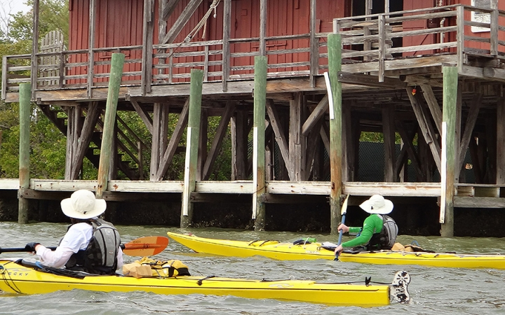 ten thousand islands kayaking trip for adults