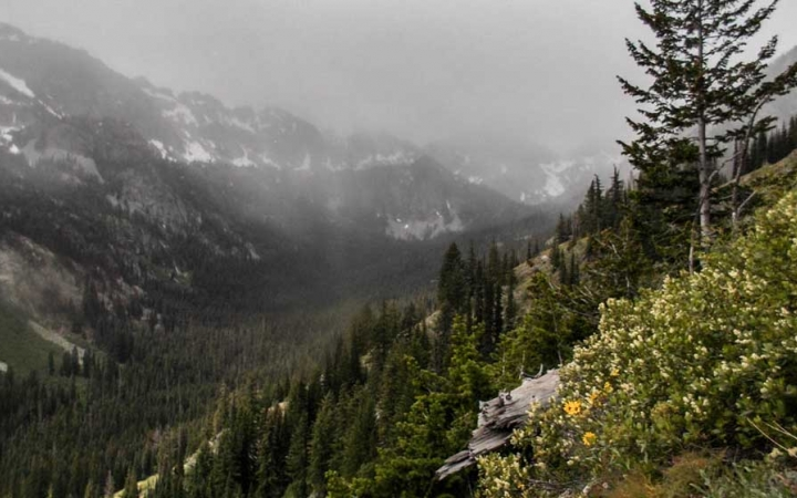 mountain landscape in the pacific northwest