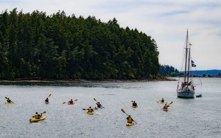 group sea kayaking in pacific northwest
